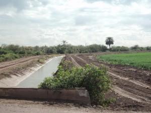 Canal de riego y ranchito de Flor